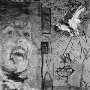 Roger Ballen Asylum of the Birds