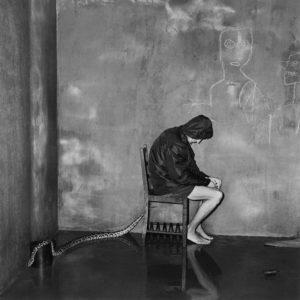 Roger Ballen Shadow Chamber