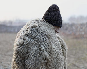 Tamas Dezso Notes for an Eplilogue