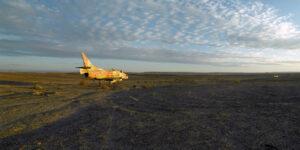 Shai Kremer Infected Landscape