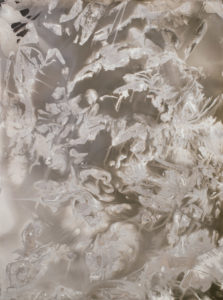 Rachelle Bussières abstract photogram