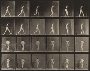 Eadweard Muybridge Women and Children
