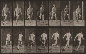 Eadweard Muybridge males