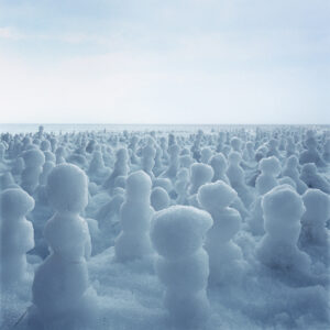 Simen Johan Breeding Ground